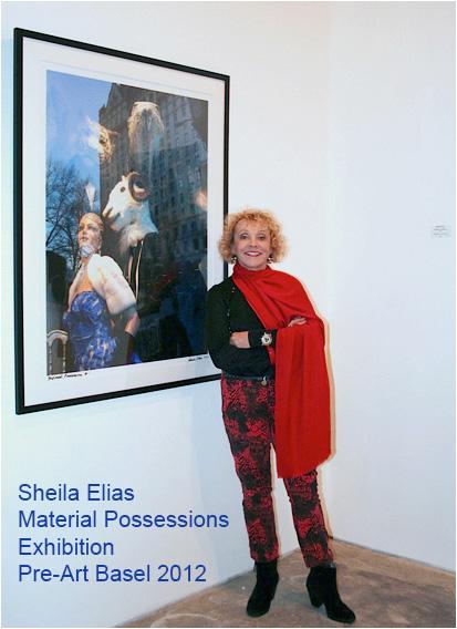 SheilaElias-MaterialPossessions-2012